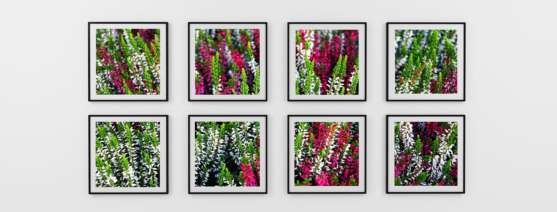 veggbilder fotokunst kunstfoto laminering laminert