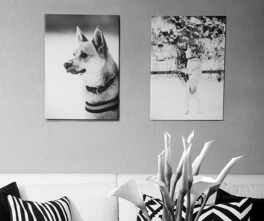 veggbilder fotokunst kunstfoto lerret